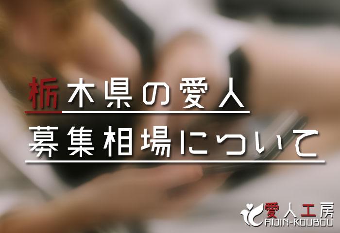 栃木県の愛人募集相場について